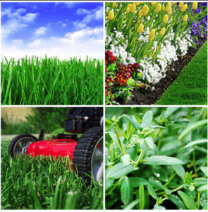Lawn and Property Maintenance Services in Redlands CA - Redlands Landscapers